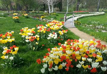 Garten- und Landshaftspflege